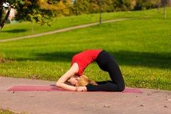 Contratan a la muchacha hermosa joven a yoga, al aire libre en un parque Imagen de archivo libre de regalías