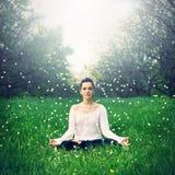 Contratan a la muchacha hermosa a yoga en el bosque Imagen de archivo libre de regalías