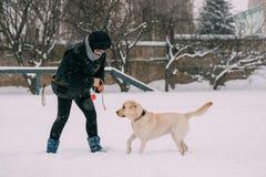 Contratan a la mujer joven al entrenamiento del perro Agilidad del perro Perro perdiguero de Labrador bonito Imagen de archivo libre de regalías