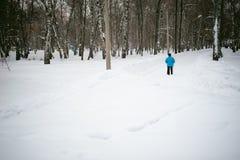 Contratan a la mujer mayor en nordic que camina al aire libre en invierno Fotografía de archivo