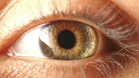 Contratto dell'iride dell'occhio stock footage