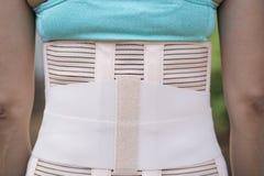 Contributo posteriore alla parte posteriore del muscolo Fotografia Stock Libera da Diritti