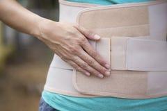 Contributo posteriore alla parte posteriore del muscolo Immagini Stock Libere da Diritti