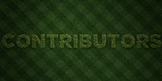 CONTRIBUTORS - fresh Grass letters with flowers and dandelions - 3D rendered royalty free stock image Royalty Free Stock Image