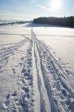 Tracce nella neve Immagine Stock Libera da Diritti