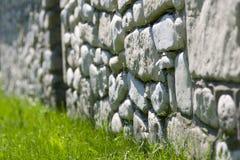 contro la parete della roccia di verde di erba Fotografia Stock