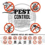 Control de parásito Infographics Fotos de archivo libres de regalías