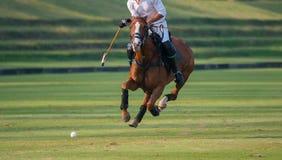 Control de Polo Horse Player Riding To la bola imagen de archivo