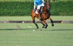 Control de Polo Horse Player Riding To la bola fotografía de archivo