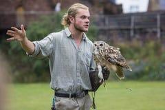 Controlador del pájaro con un Eagle-búho indio fotografía de archivo