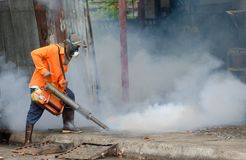 Controle da dengue Fotografia de Stock