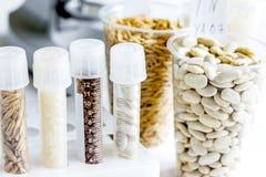 Controle da qualidade de alimento no laboratório ninguém Imagens de Stock Royalty Free