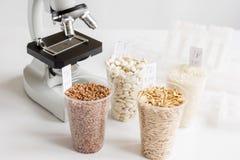 Controle da qualidade de alimento no laboratório ninguém Fotografia de Stock