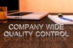 Controle largo da qualidade da empresa Imagem de Stock