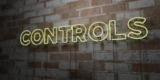 CONTROLES - Gloeiend Neonteken op metselwerkmuur - 3D teruggegeven royalty vrije voorraadillustratie stock illustratie