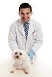 Controllare sicuro con il cane di animale domestico Immagini Stock Libere da Diritti