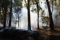 Controlled Fire Burn. A controlled fire burn occurs near Whitfield in the King Valley, Victoria, Australia stock photos