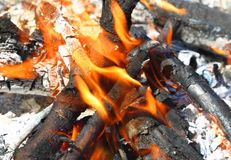 Controlled fires Royalty Free Stock Photography