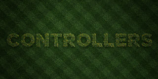 CONTROLLERS - fresh Grass letters with flowers and dandelions - 3D rendered royalty free stock image Stock Images