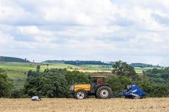 Controlli dell'agricoltore che piantano nel campo Fotografia Stock