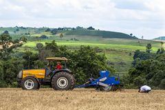 Controlli dell'agricoltore che piantano nel campo Fotografie Stock