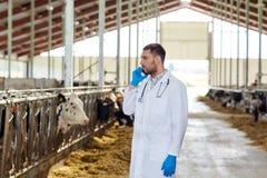 Controlli medico che rivolge al cellulare ed alle mucche all'azienda agricola Fotografia Stock Libera da Diritti