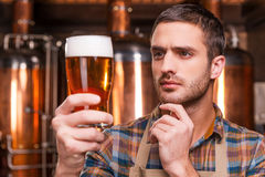 Controlling beer quality. Royalty Free Stock Photography