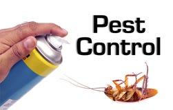 Controllo dei parassiti Immagini Stock Libere da Diritti