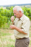 Controllo della reazione allergico Fotografia Stock Libera da Diritti
