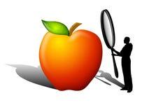 Controllo di sicurezza di qualità dei prodotti alimentari Immagini Stock Libere da Diritti