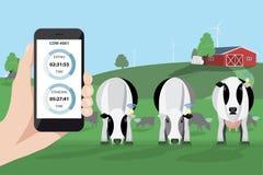 Controllo di un gregge delle mucche su un'azienda lattiera illustrazione vettoriale