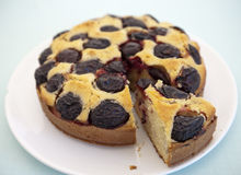 Contry plum cake Royalty Free Stock Images