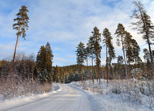 Contry road in a winter. Stock Photo
