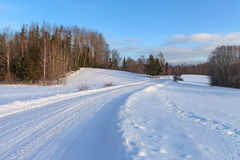Contry road in a winter. Stock Image