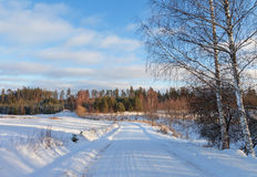 Contry road in a winter. Royalty Free Stock Images