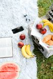 Convenient box for food, fruits, book and smartphone on plaid and grass. Convenient box for food, fruits, opened book and smartphone on plaid and grass. Concept royalty free stock images