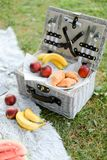Convenient box for food, fruits on plaid and grass. Convenient nice box for food, fruits on plaid and grass. Concept of picnic accessories and healthy food royalty free stock photography