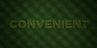 CONVENIENT - fresh Grass letters with flowers and dandelions - 3D rendered royalty free stock image. Can be used for online banner ads and direct mailers Royalty Free Stock Photos