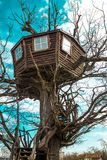 Convenient house in the trees.  royalty free stock images