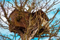 Convenient house in the trees.  royalty free stock image