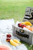 Convenient organizer for food, fruits on plaid and grass. Convenient nice organizer for food, fruits on plaid and grass. Concept of picnic accessories and stock photo