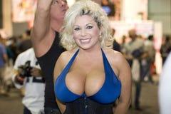 Convenio de los AVN de Claudia Marie fotos de archivo