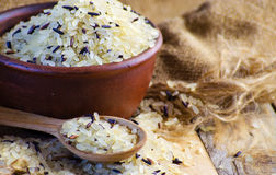 Conventional grain and wild rice Royalty Free Stock Images