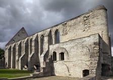 Convento arruinado antiguo del St Brigitta 1436 años en la región de Pirita, Tallinn, Estonia fotos de archivo