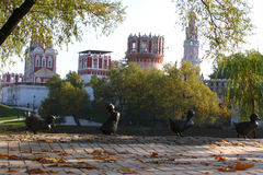 Convento de Novodevichy en Rusia Fotos de archivo libres de regalías