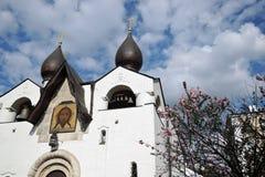 Convento di Marfo-Mariinsky di pietà a Mosca Immagini Stock Libere da Diritti