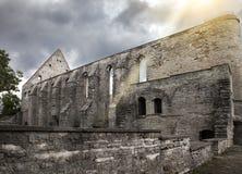 Convento rovinato antico della st Brigitta 1436 anni nella regione di Pirita, Tallinn, Estonia immagine stock