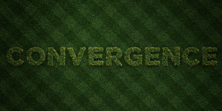CONVERGENCE - fresh Grass letters with flowers and dandelions - 3D rendered royalty free stock image. Can be used for online banner ads and direct mailers Royalty Free Stock Photography