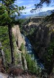 Converging Yellowtone River. Tower Creek converges on the Yellowstone River in this canyon area of Yellowstone National Park Royalty Free Stock Images