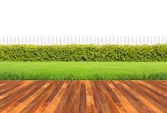 Conversão verde Foto de Stock Royalty Free